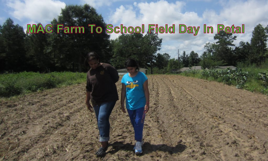 Farm to School Field day 042